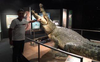 E.U.A.: MUSEU DE HISTÓRIA NATURAL