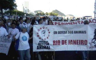 MANIFESTAÇÃO PELOS ANIMAIS