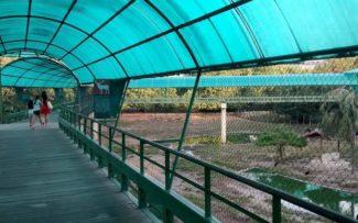 ZOO do RJ: A revitalização do parque segue instruções pedidas pelo Ibama