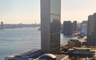 ONU e Meio Ambiente