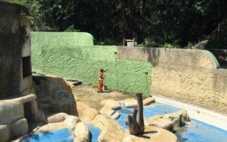 Presidente do TJ-RJ cassa liminar que anulava concessão do Zoológico do Rio