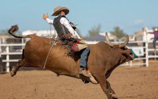 OAB usará todos os meios jurídicos para evitar o Rodeio.