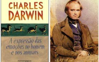 OAB, com Darwin, consegue parar Rodeio de Araruama/RJ