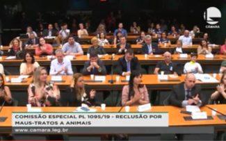 Audiência Pública em Brasília: Maus-tratos aos animais