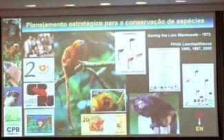40 Anos do Centro de Primatologia do RJ
