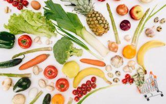Comissão da OAB quer ampliar debate sobre alimentação sem uso de animais
