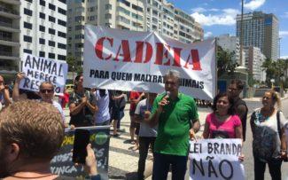 Manifestação contra maus-tratos – Copacabana/RJ