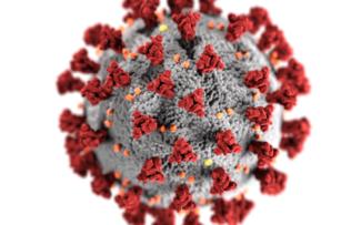 Entenda o perigo da covid-19 se comparada a outras doenças