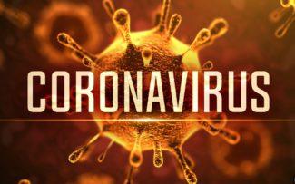 Cientistas brasileiros reproduzem coronavírus em laboratório
