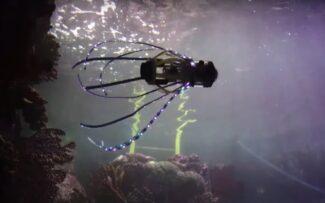 Robô em forma de lula para estudar o Oceano