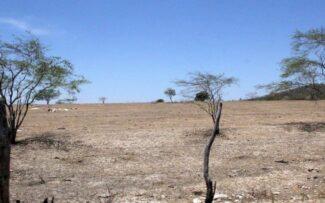 Um deserto no Nordeste brasileiro