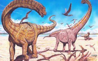 Brasileiros participam de descoberta de 2 espécies de dinossauros na China